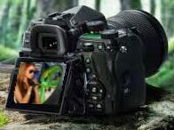 Fotolifestyle